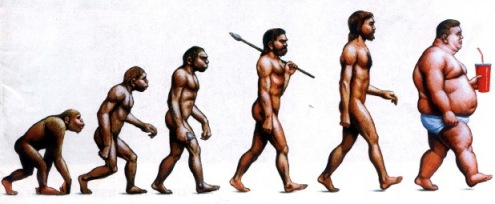 obesity_evolution
