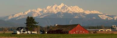 whatcom county farms